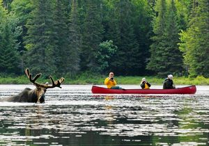 3 Tage Kanu im Algonquin - Journey of the Voyageur