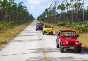 Grand Bahama - Jeep Safari
